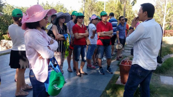 Tour Buôn ma Thuột - Quy Nhơn - Tuy Hòa