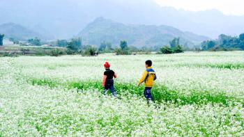 Tour du lịch Thung Nai - Mộc Châu