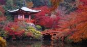 Tour Nhật Bản mùa lá đỏ bay Vietnam airlines