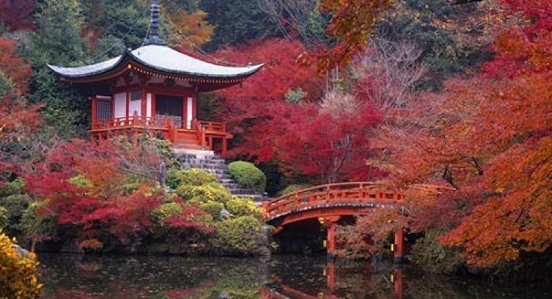 Nhật Bản mùa lá đỏ: TOKYO - FUJI  - OBARA -  OSAKA - KYOTO - NAGOYA