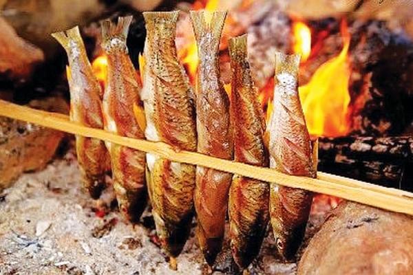 Kết quả hình ảnh cho cá suối sapa